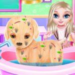 Baby Elsa Pet Surgical process