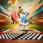 Crazy Canine Racing Sport 2020
