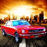 Day-to-day Mustang Jigsaw