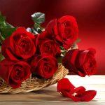 Crimson Roses Puzzle