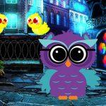 Ruler Owl Escape Sport