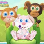 Child Animal Daycare