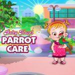 Little one Hazel Parrot Care