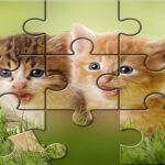 Cute Cats Puzzle recreation ftree