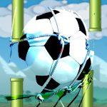 Flying football- Flapper Soccer Sport