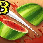 Fruit Ninja Slice Professional Fruit Slasher