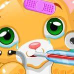 Kitty Physician