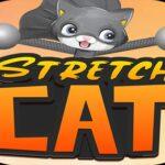 STRETCH CAT 3D